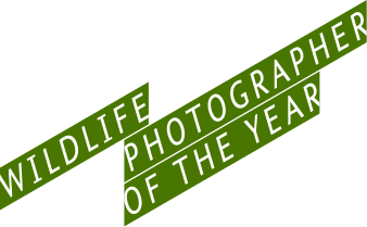 338px-Wildlife_Photographer_of_the_Year_logo.svg
