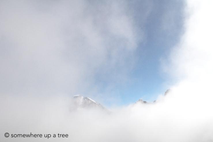 mountains1_Processedlogo.jpg