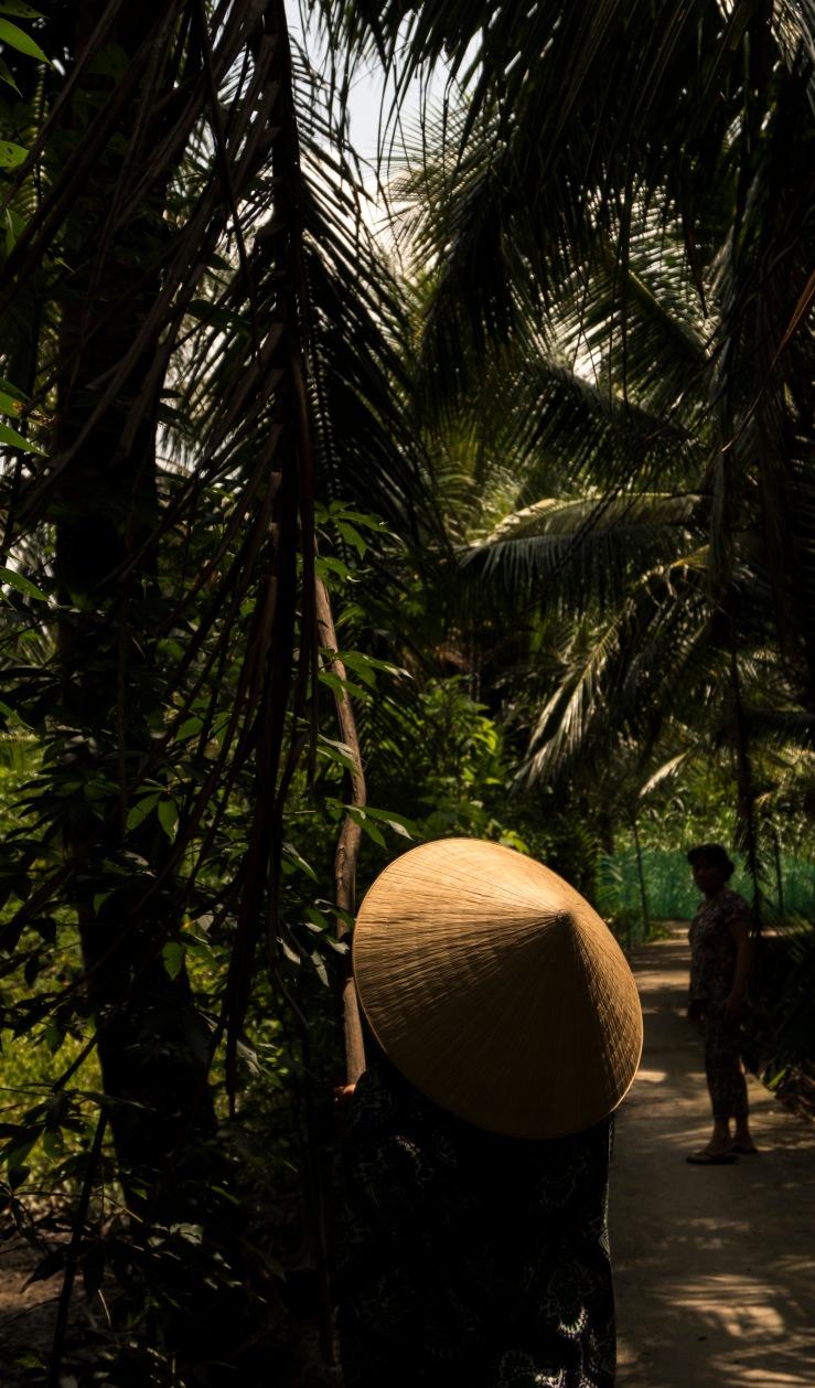 coconut down
